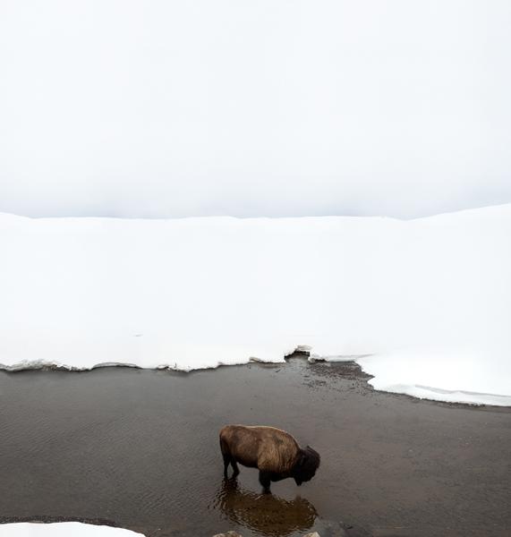 White Horizon by Michael G Zimmerer  |  via Fox & Brie