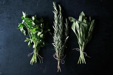 Drying Herbs DIY | Friday Favorites via Fox & Brie
