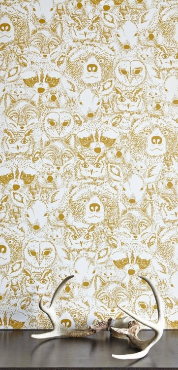 Wild Wallpaper by Chasing Paper | Friday Favorites via Fox & Brie